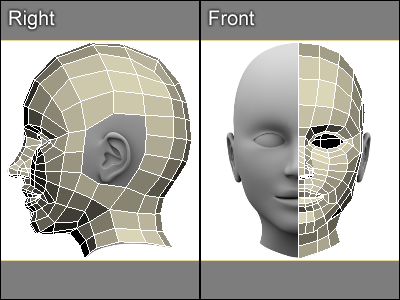Modeling A Head And A Neck In 3ds Max