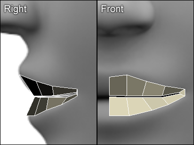 Best tutorial for all 3d modeling a human head in 3d for 3ds max face modeling